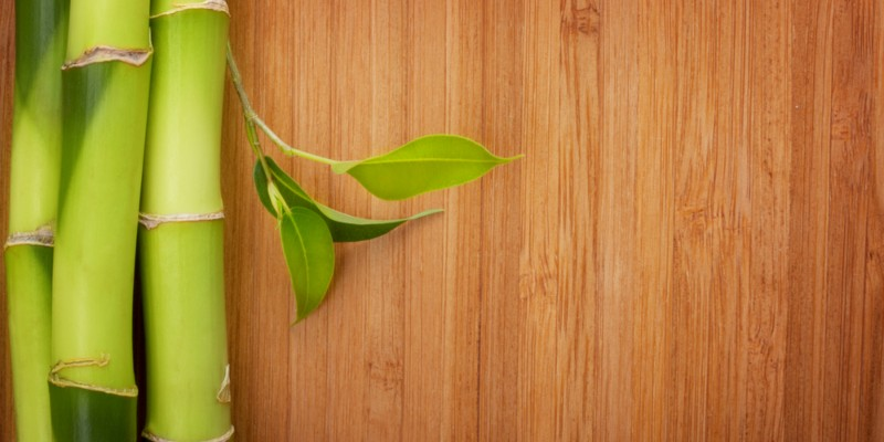 Bamboo Flooring Reviews Pros And Cons Cost Best Brands