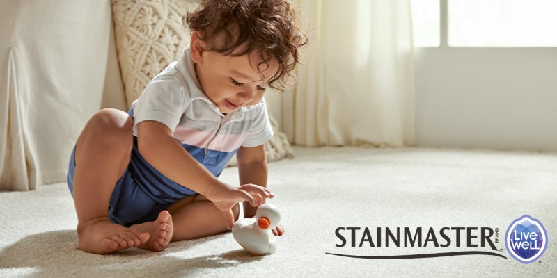 Stainmaster Livewell Carpet