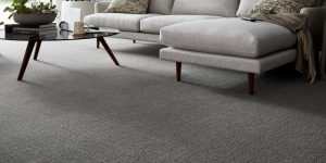 Karastan Carpet Reviews and Prices