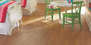 Stainmaster Vinyl Plank Reviews and Prices