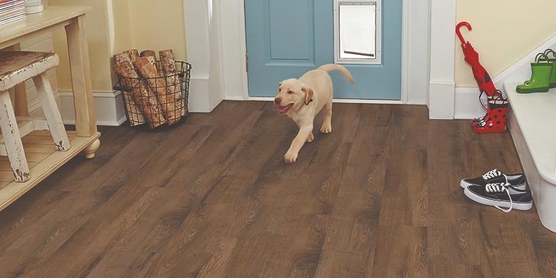 Stainmaster Vinyl Plank Flooring