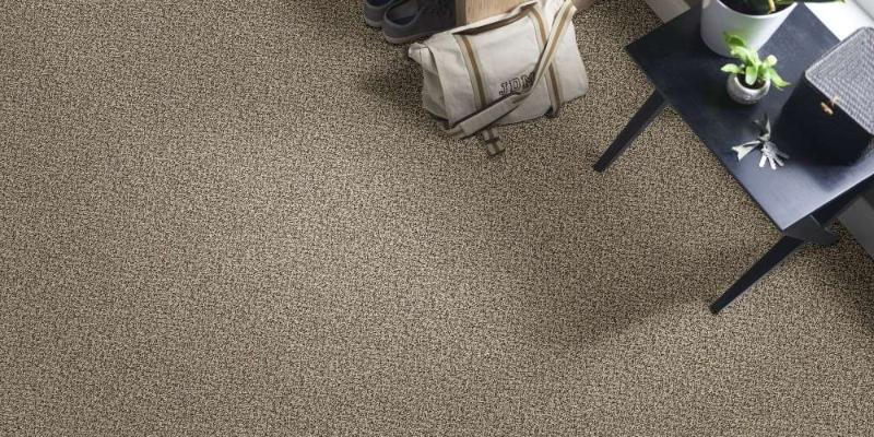 Berber Carpet Pros And Cons Best Brands Cost